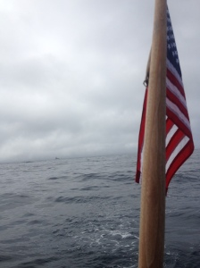 Rounding Pt St George in the fog