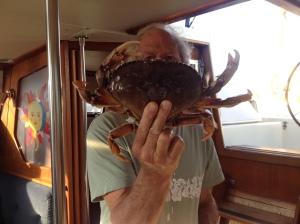 That's a big crab!