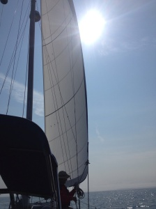 Sail up and sun shining!