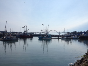 Commercial marina