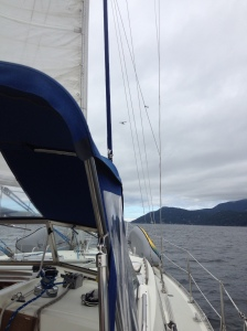 sailing to orcas