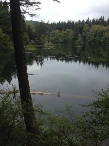 Cascade lagoon