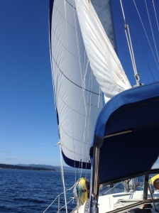 Sailing@