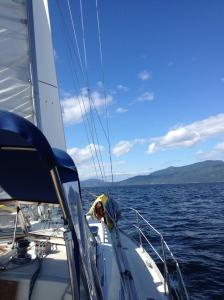 Sailing full speed ahead