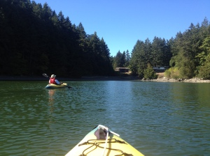 Kayaking in Madrona Bay