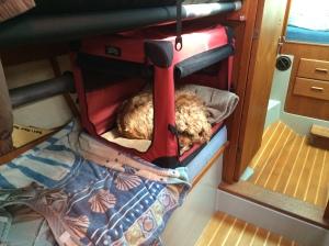 Charlie's bunk