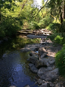 Beautiful Goldstream Park