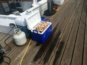 Some of the bounty on our dock